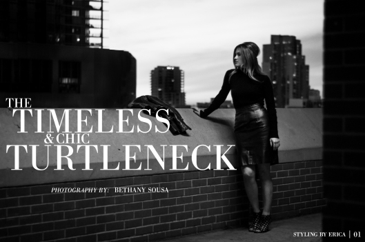 turtleneck-concept5-01
